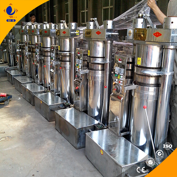 buy premium oil press machine for vegetable seed