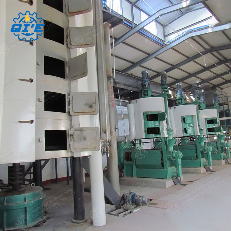 rice bran oil press machine, rice bran oil press machine