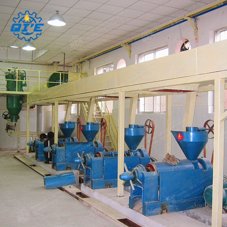 oil extraction machine - edible oil expeller / extraction